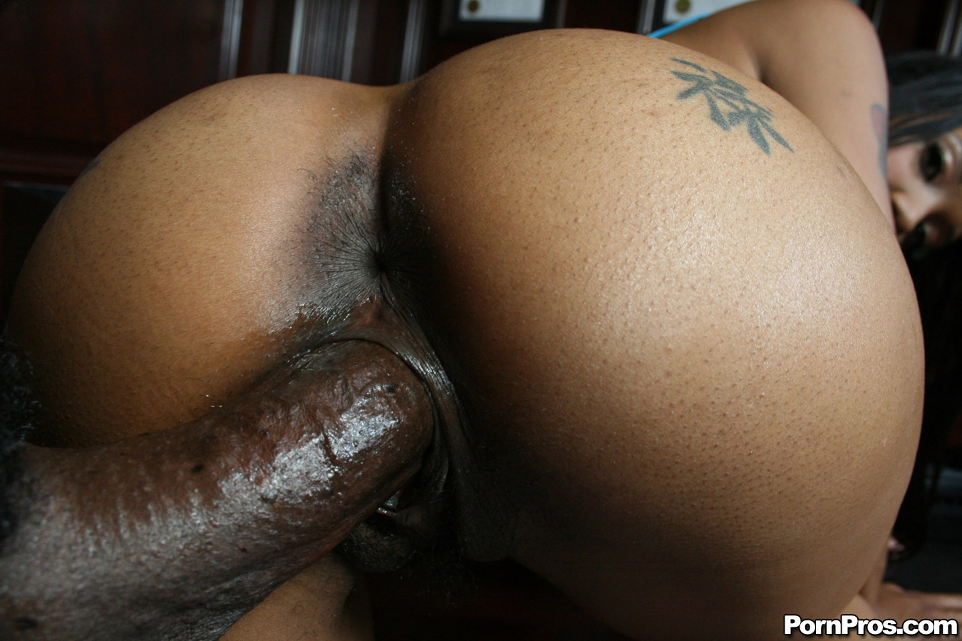 Black big ass fucking video